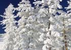 Dolazi zima 3
