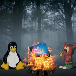 Linux and FreeBSD campfire
