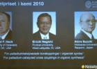 Nobelova nagrada 2010 - hemija 5