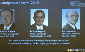 Nobelova nagrada 2010 - hemija 23