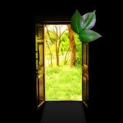 Свечано отварање Еко-собе у Нишу 1