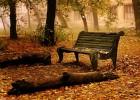 Stigla je jesen 1