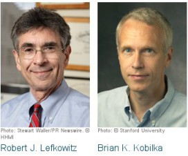 Nobelova nagrada 2012 - hemija 14
