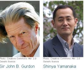 Nobelova nagrada 2012 - medicina 7
