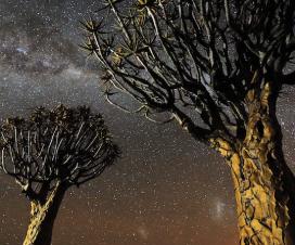 Namibijske noći [12.09.2013] 1