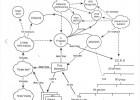 World Wide Web (WWW) danas slavi 25. rodjendan [12.03.2014] 5