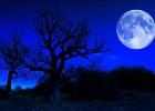 Plavi Mesec 2