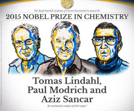 Nobelova nagrada za hemiju (2015) 9