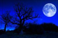Pomračenje krvavo plavog super Meseca 3
