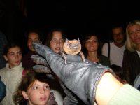 22. Međunarodna noć slepih miševa 2