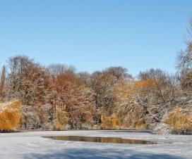 Početak zime 3