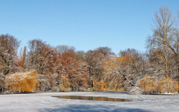 Početak zime 1