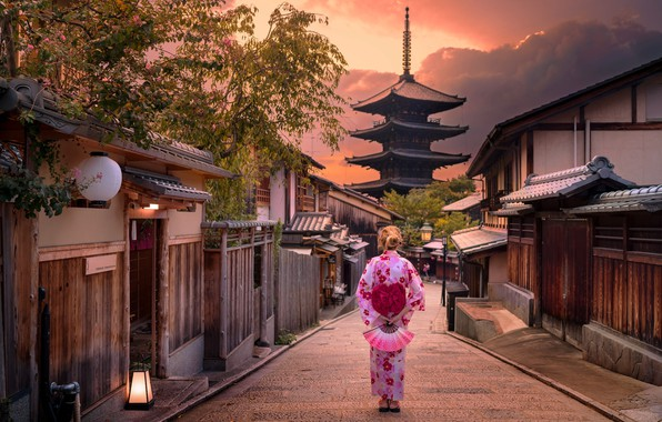 Japan u periodu od 1854. do 1919. godine – priča o uspehu 4