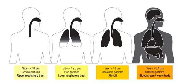 Kvalitet vazduha - boja, ukus i miris? 3