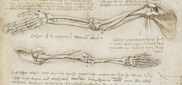 Leonardo da Vinči: Umetnik. Naučnik. Pronalazač. 2
