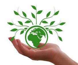 Tribina na temu klimatskih promena i zaštite životne sredine 6