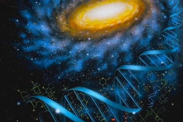dna_galaxy_lynnette_cook